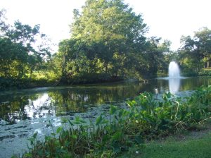 Audubon Park, fountain